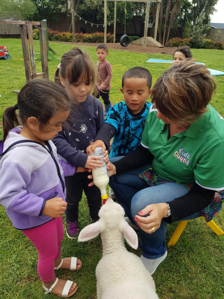 Kids Count Pukekohe Farm Animals.